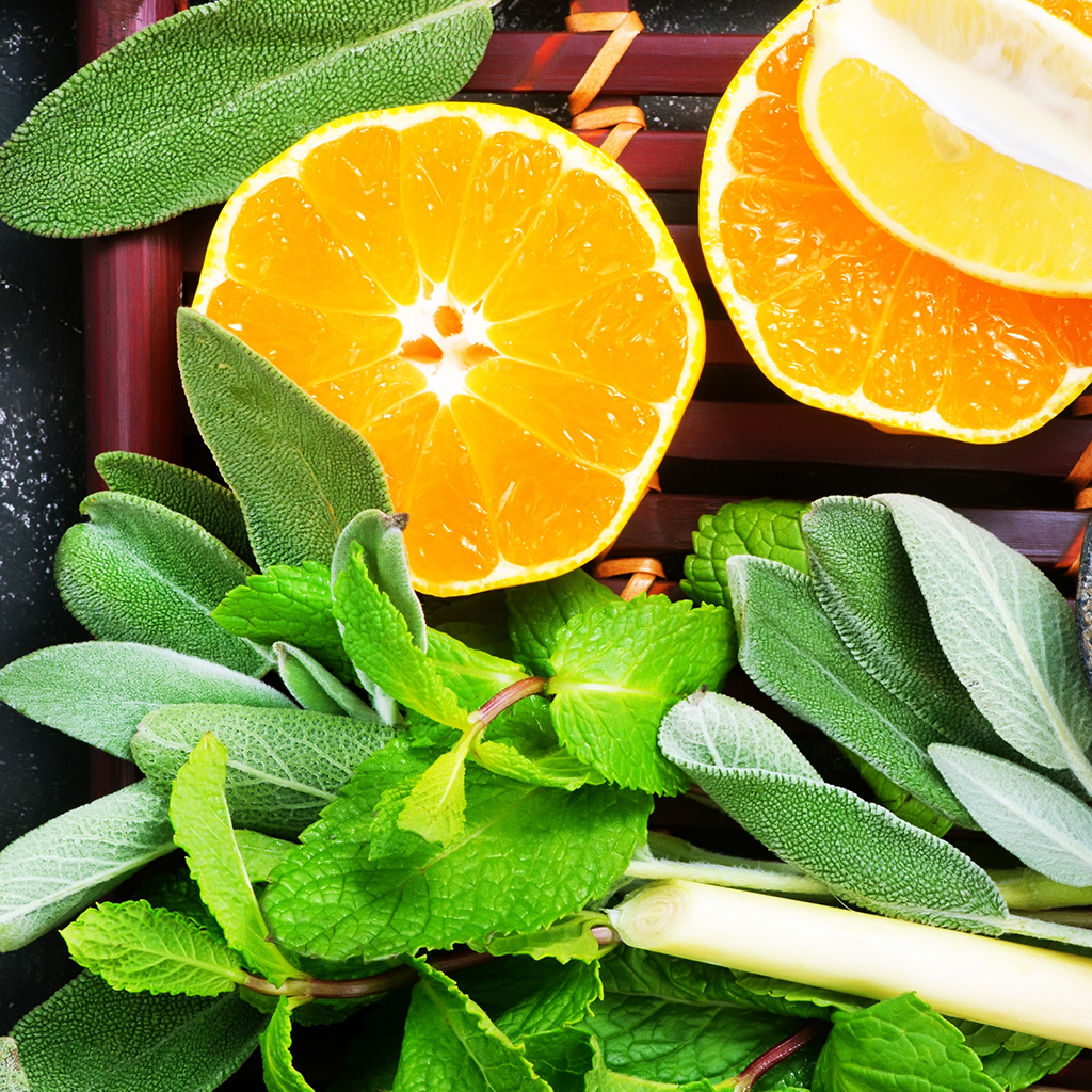 Crafter's Choice™ Sage & Citrus* Fragrance Oil 445