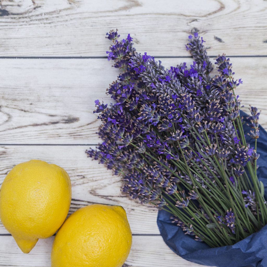 Crafters Choice Lemon Lavender Fragrance Oil 176