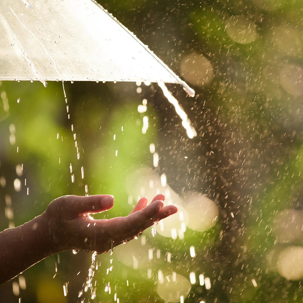 Bilderesultater for spring rain