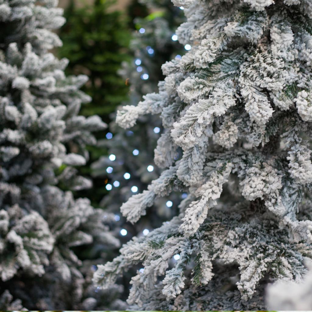 Crafter's Choice™ Santa's Tree Farm Fragrance Oil 529