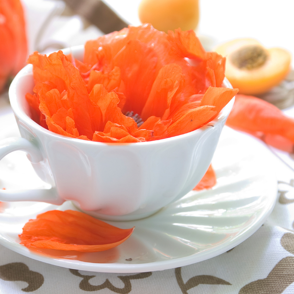 Wild Peach Poppies Fragrance Oil 817 Crafter S Choice