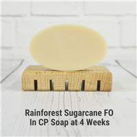 Rainforest Sugarcane Fragrance Oil 295
