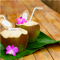 Hawaiian Coconut Fragrance Oil 171
