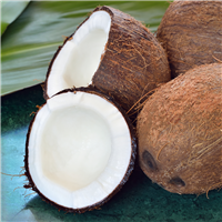 Cool Coconut* Fragrance Oil 607