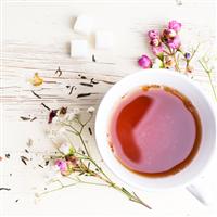 Bergamot & White Tea Fragrance Oil 656