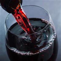 Merlot Wine Fragrance Oil 717