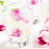 Rosewater Lemonade Fragrance Oil 738