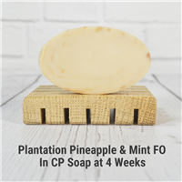 Plantation Pineapple and Mint FO in CP Soap