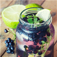 Blackberry Mint Spritzer FO