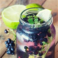 Blackberry Mint Spritzer Fragrance Oil (Special Or