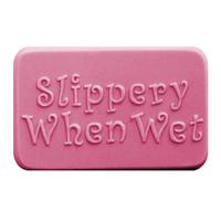 Slippery When Wet Soap Mold (MW 191)