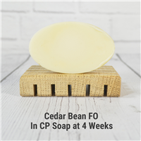 Cedar Bean Fragrance Oil in CP Soap