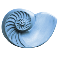 Chambered Nautilus Soap Mold (MW 244)