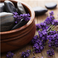 Black Amber & Lavender Fragrance Oil 489