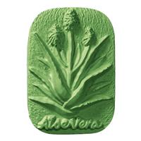 Aloe Vera Soap Mold (MW 294)