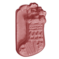 Christmas Stocking Soap Mold (Special Order)