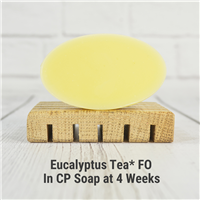 Eucalyptus Tea* FO in CP Soap