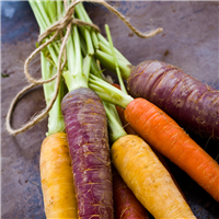 Purple Carrots Fragrance Oil (Special Order)