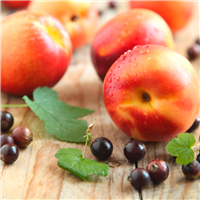 Nectarine & Wild Berries Fragrance Oil (Special Or