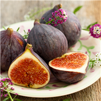 Bayberry Fig Fragrance Oil (Special Order)