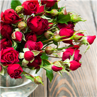 Sandalwood Rose* Fragrance Oil 900