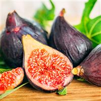 Cashmere Fig* Fragrance Oil 896