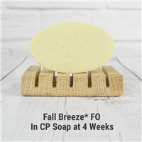 Fall Breeze* Fragrance Oil 898