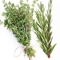 White Thyme & Rosemary Fragrance Oil 940