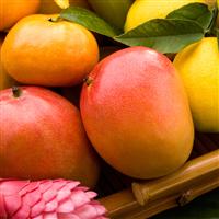 Mandarin Mango* Fragrance Oil (Special Order)