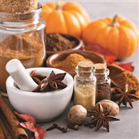 Pumpkin Spice - Natural Fragrance Oil 946