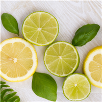 Cool Citrus Basil* Fragrance Oil 422
