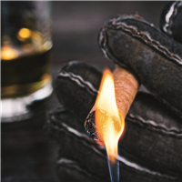 Cashmere Suede* Fragrance Oil 983