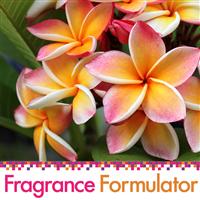Spiced Floral Fragrance Oil - FF# 18 (Special Orde