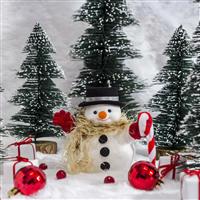 Snowman Poop Fragrance Oil 769
