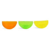 Fruit Slices Mini Mold (LOP 01)