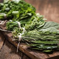 Eucalyptus Mint & Sage - Natural FO 1018