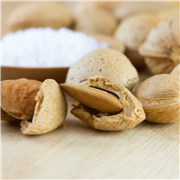 Almond Milk & Sea Salt Fragrance Oil 1009