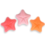 Starfish Mini Mold (LOP 21)