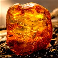 Amberwood Fragrance Oil 1039