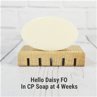 Hello Daisy FO in Cold Process Soap