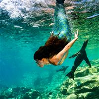 Salt Water Mermaid Fragrance Oil 791