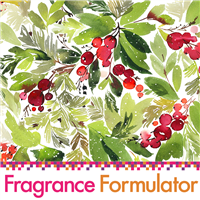 Winter Fragrance Blending Kit