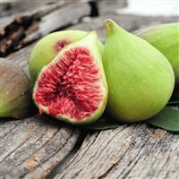 Fiddle Leaf Fig Fragrance Oil (Special Order)