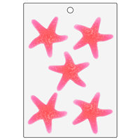 Detailed Starfish Mold (LOP 78)