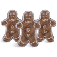 Gingerbread Man MP Soap Kit