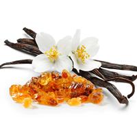 Amber & Vanilla Blossom Fragrance Oil 1142