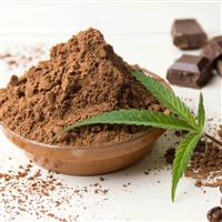 Cannabis & Cocoa Fragrance Oil 1143