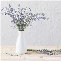 Modern Lavender Fragrance Oil 1157