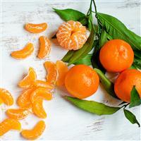 Asian Mandarin & Olive Leaf - Natural Fragrance Oi