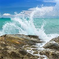 Ocean Mist & Sea Salt - Natural Fragrance Oil 1227